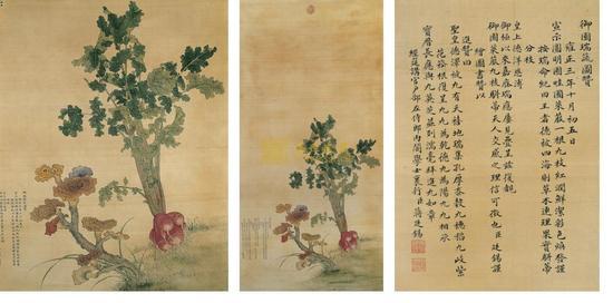 清代宫廷画家蒋廷锡《御园瑞蔬图》