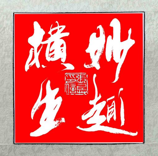 张兵作品《妙趣横生》规格:50cmx50cm