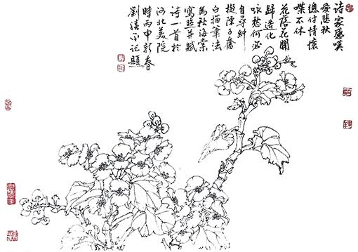 《秋海棠花》诗家感叹爱悲秋,总付情怀喋不休,花落花开归造化,咏愁何必自寻纠。