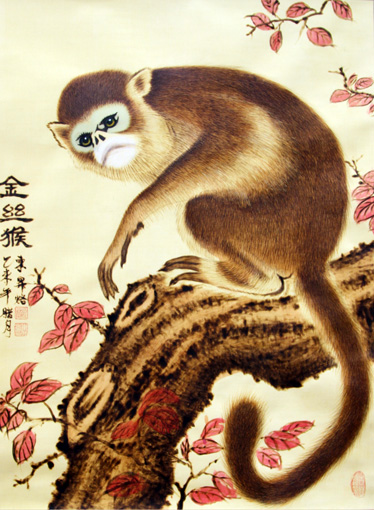 《金丝猴》